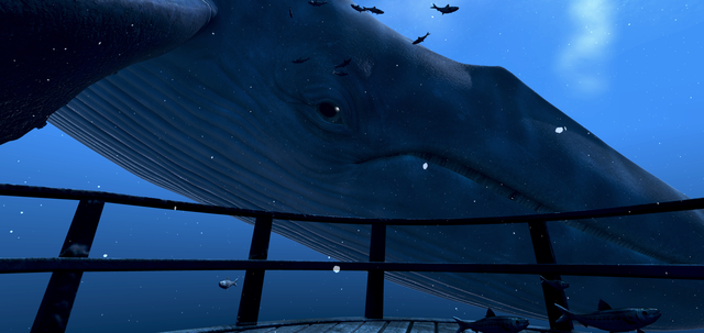 theBlu: Whale Encounter | Transport VR